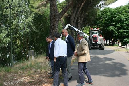 Amia interviene sull'argine dell'Adige nel tratto tra Castelvecchio e Parona