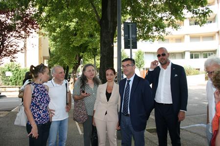 Amia Verona: rimozione alberature pericolanti in via Anzani e in via Risorgimento