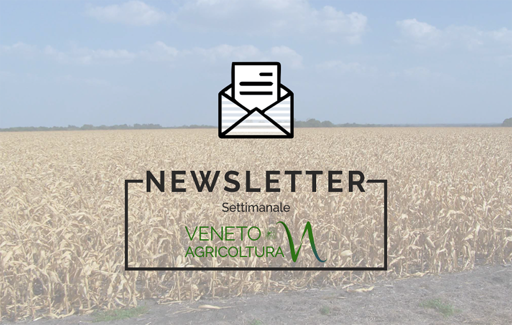 E' uscita la nuova newsletter di Veneto Agricoltura