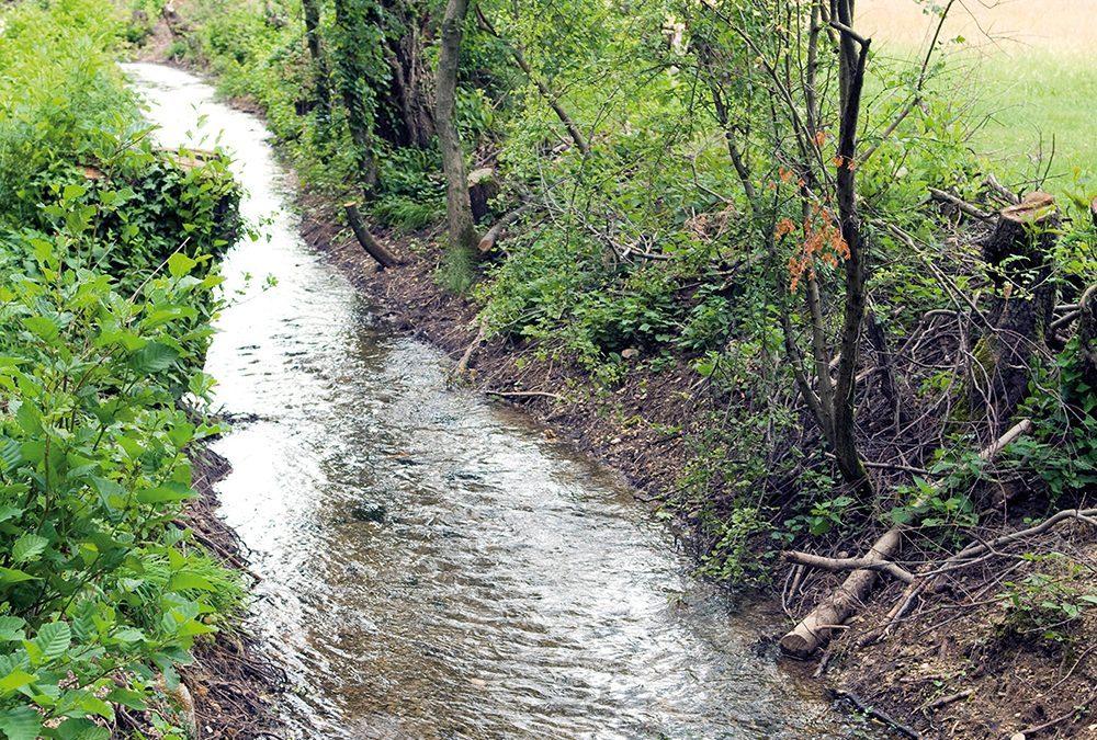 Presentata una nuova ricerca storica su alcune rogge derivate da fiume Brenta