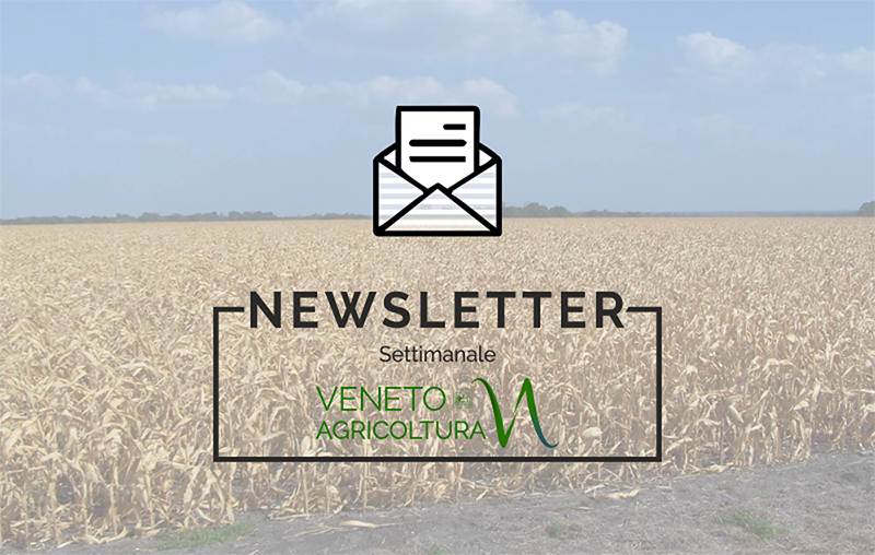 E' uscita ed è disponibile on line la prima newsletter del 2020 di Veneto Agricoltura