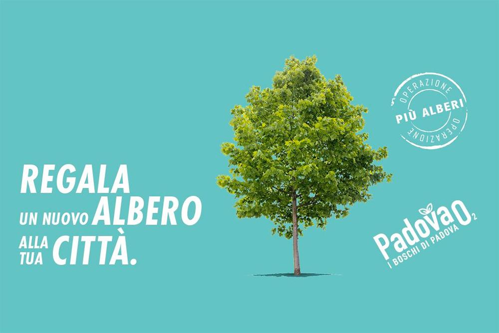Quattro nuovi boschi urbani saranno inaugurati domani a Padova