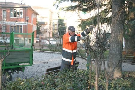Amia Verona prosegue senza soste la manutenzione del verde pubblico