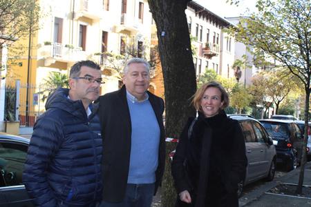 A Verona in via Nino Bixio interventi di messa in sicurezza degli alberi malati e pericolanti