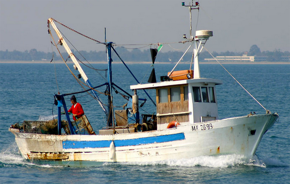 Grande rilevanza del Progetto ITACA per la tutela del mare Adriatico e della pesca