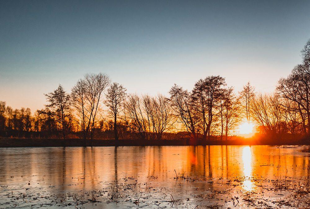 Concluso il recupero ambientale del laghetto del Parco dell'Amicizia a Tezze sul Brenta