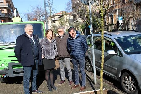 Rimossi e sostituiti ventitré alberi malati e pericolanti in via Nino Bixio a Verona