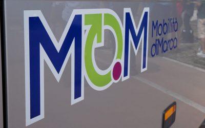 Linee 214, 312 e 206 di Mobilità di Marca: sono previste variazioni alle corse degli autobus