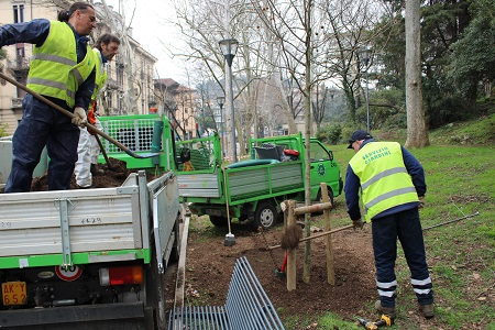 Amia ha piantato oltre cinquanta alberi nella seconda  Circoscrizione di Verona