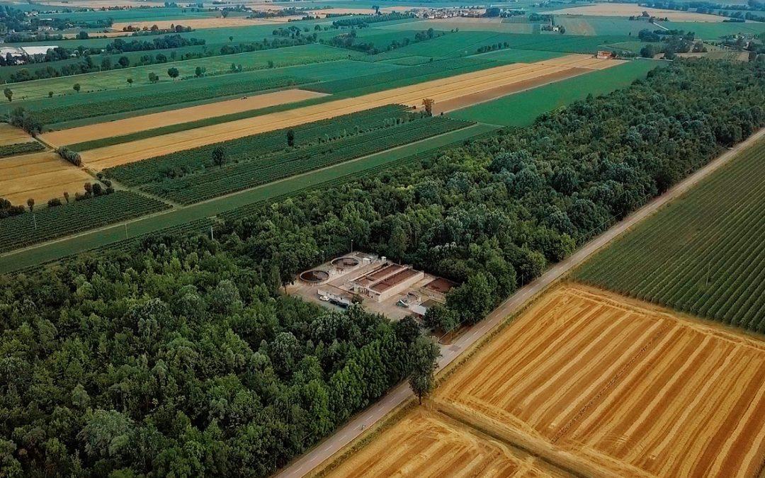 Bosco, ecocentro e impianto di depurazione: a Meolo la simbiosi uomo/ambiente diventa un tour