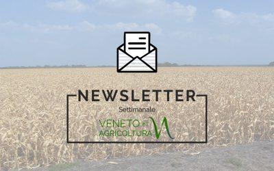 Come sempre ricco di interessanti notizie, è stato diffuso un nuovo numero della newsletter Agricoltura Veneta
