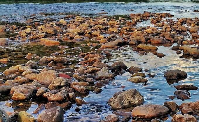 Sul sito dell'Arpav pubblicati i rapporti sullo stato delle acque superficiali, sotterranee e di transizione del Veneto
