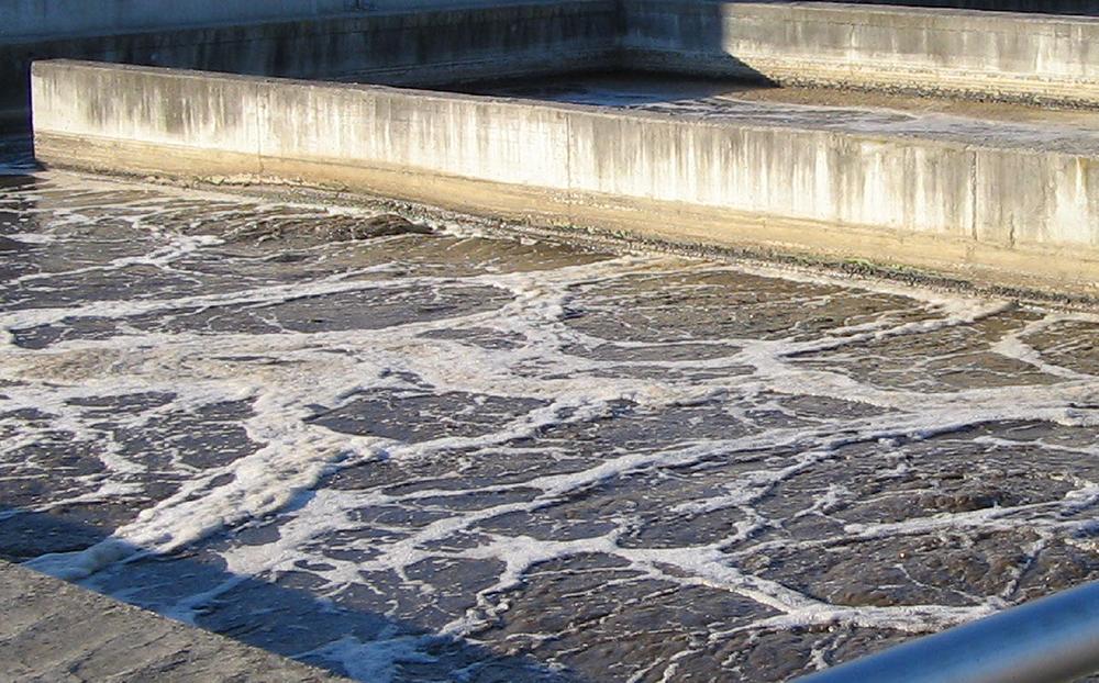 Il prossimo anno sarà costruita una nuova strada per raggiungere il depuratore delle acque reflue di Carmignano di Brenta