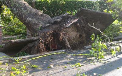 Un mese di lavori di Amia Verona per risistemare il territorio dopo le violente precipitazioni di fine agosto