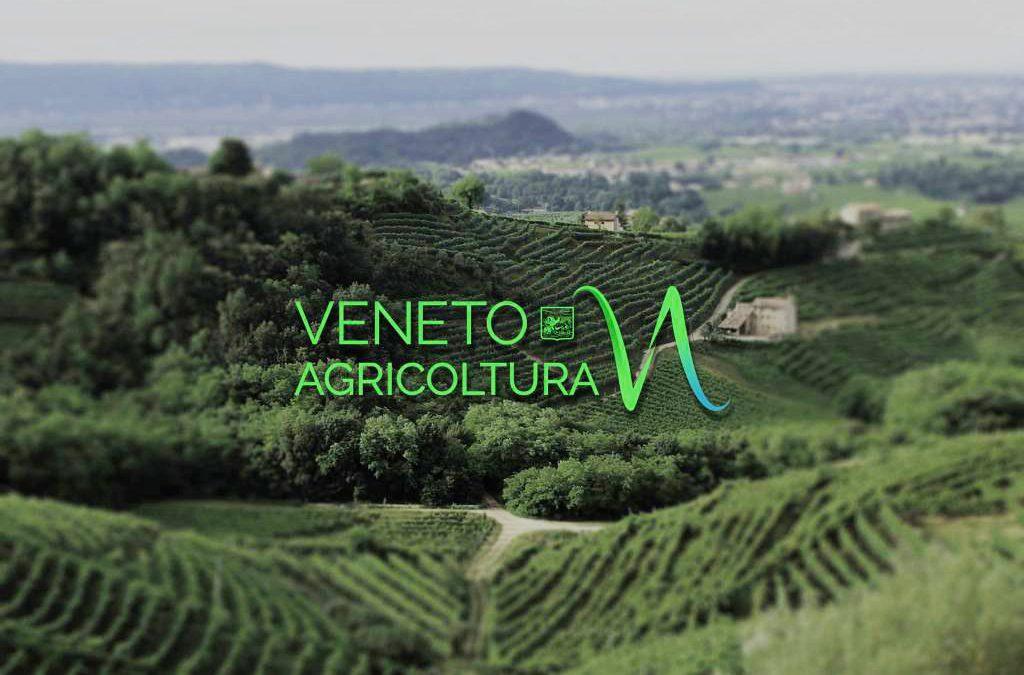 Come tradizione la newsletter di Veneto Agricoltura diventa periodica durante l'estate sino al prossimo settembre