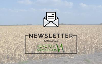 Newsletter Agricoltura Veneta: domani la consegna delle piante del progetto Ridiamo un sorriso alla Pianura Padana