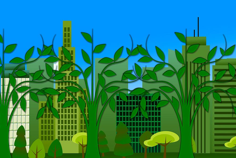 In fase di approvazione a Verona un nuovo  regolamento comunale per la tutela del verde pubblico e privato