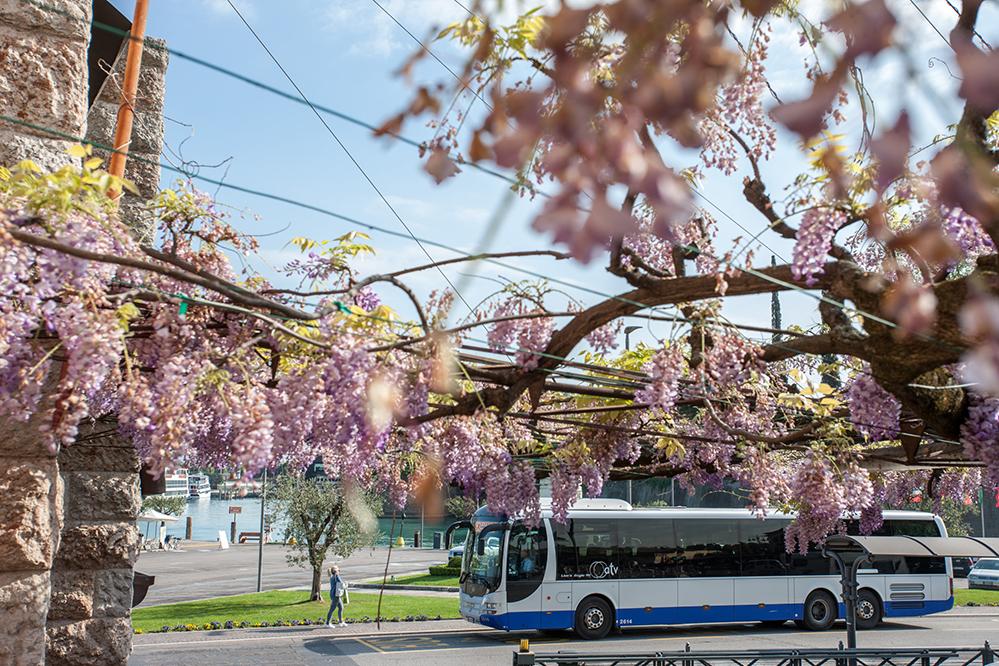 Siglato un protocollo d'intesa da ASSTRA e da ENEL X per promuovere la sostenibilità del trasporto pubblico