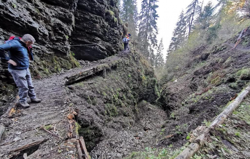 Gli operai di Veneto Agricoltura sono all'opera nei boschi del Nevegal per ripulire i sentieri devastati dalla Tempesta Vaia