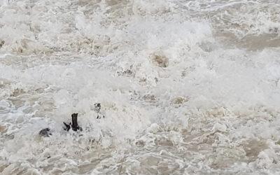 La Regione del Veneto ha annunciato lavori sui torrenti Caorame e Vases per la sicurezza idraulica del territorio