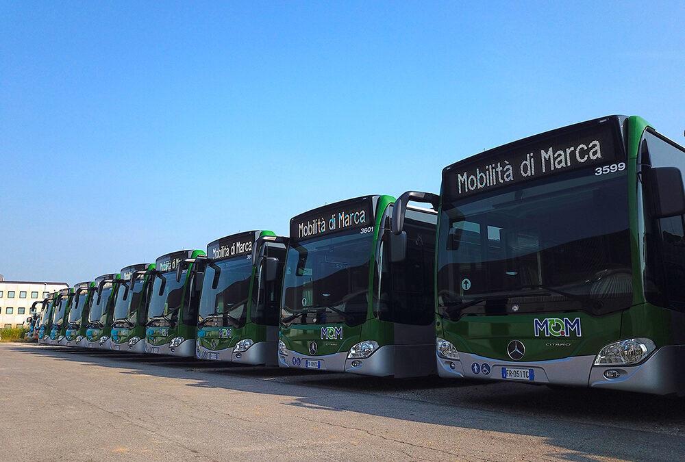 Il nuovo Polo Logistico di via Castellana a Treviso di Mobilità di Marca sarà una realtà da domani mattina