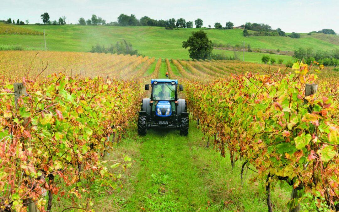 Il trend post Covid e i primi dati dell'agroalimentare veneto nel 2020 saranno presentati venerdì 15 gennaio