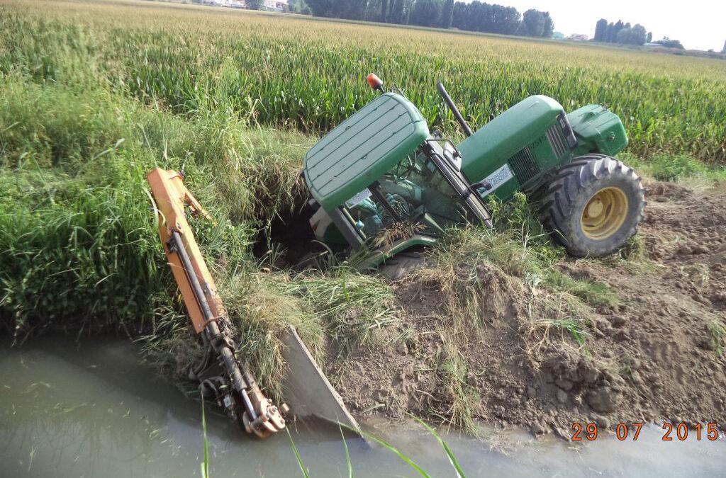 Le nutrie nei corsi d'acqua sono un'emergenza: tavolo di lavoro del Consorzio Veronese per affrontare il problema