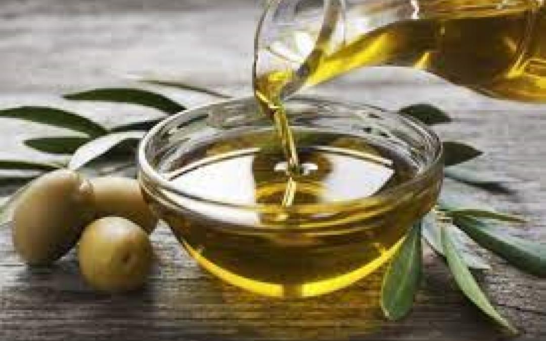 Annata del secolo per l'olio veneto DOP: intervista al presidente del Consorzio di Tutela su Veneto Agricoltura Channel