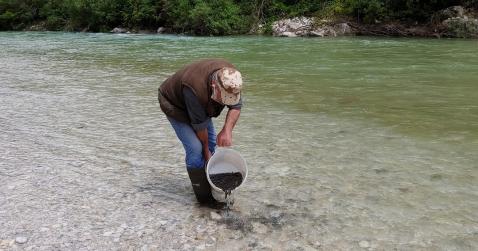 Sabato prossimo il ripopolamento dei corsi d'acqua del feltrino, dell'area di Belluno, di Longarone e Calalzo