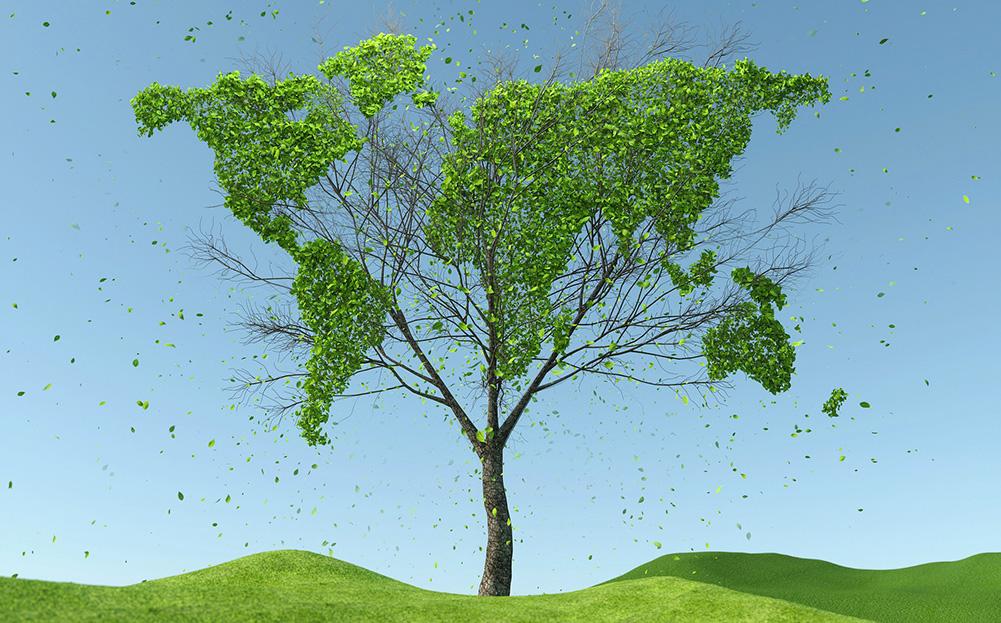 Utilitalia ha segnalato il Premio Impresa Ambiente promosso dalla Camera di Commercio di Venezia Rovigo
