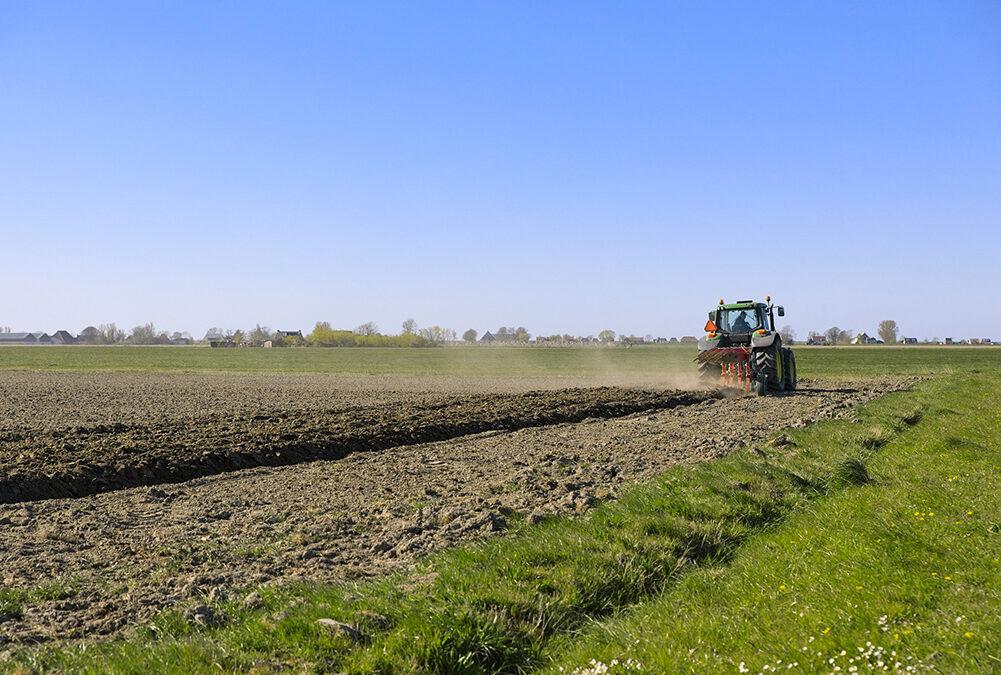 Programma di Sviluppo Rurale del Veneto: sono state finanziate tutte le 327 domande del Pacchetto Giovani