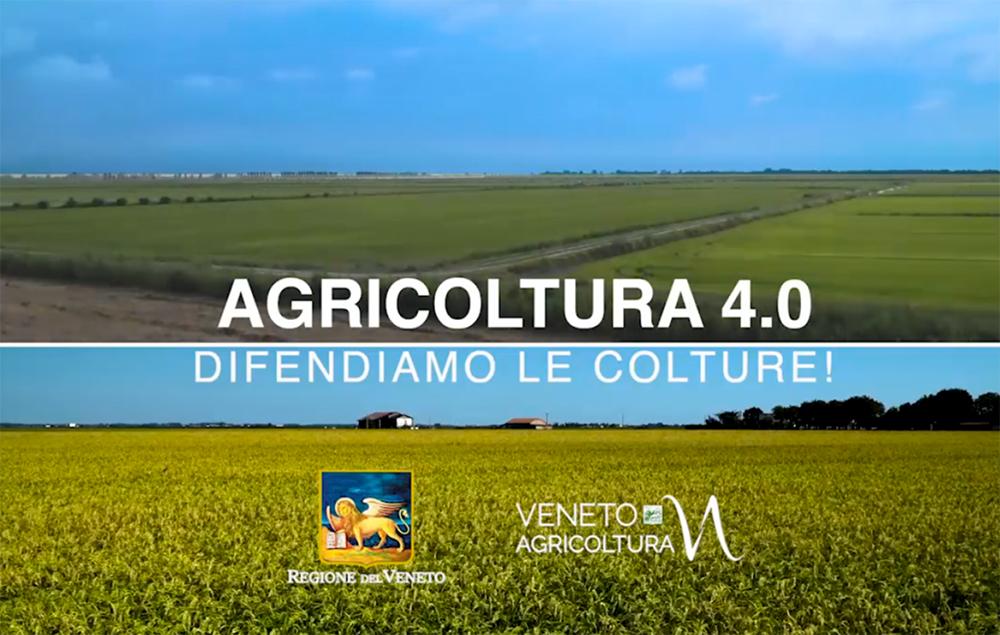 Da domani, ogni venerdì, un nuovo notiziario di Regione del Veneto e Veneto Agricoltura su Telepadova 7 Gold