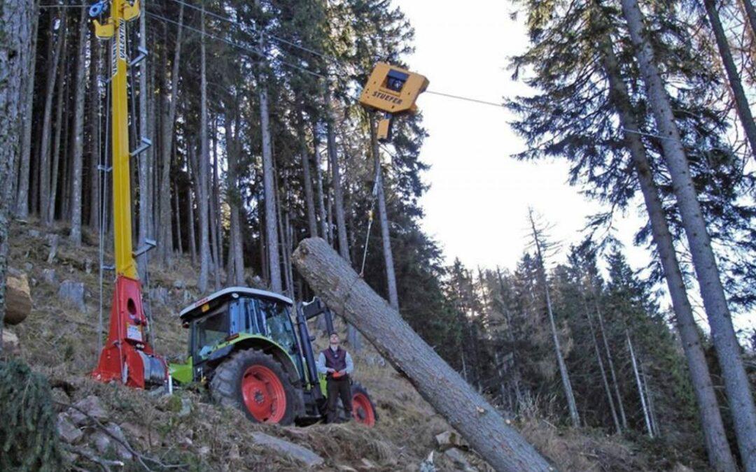 """Pascoli o bosco? Come gestire il territorio dopo la tempesta VAIA? Domani due convegni al """"Festival dell'Agricoltura"""""""