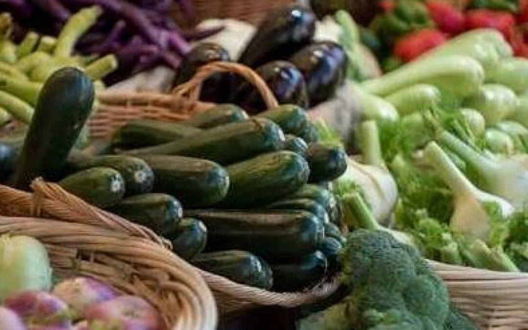 7° Festival dell'Agricoltura: un milione e mezzo di veneti fanno la spesa negli oltre 100 farmers market regionali